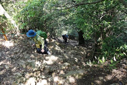 うまのせ登山道2.jpg