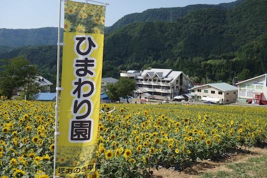 ひまわり園.jpg