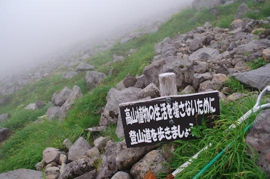 登山道を歩きましょう.jpg